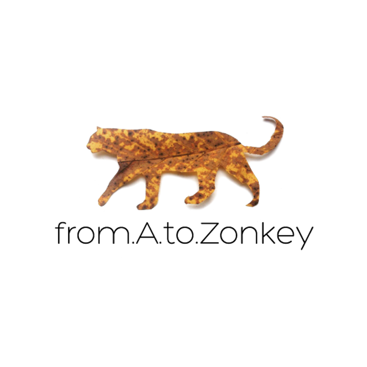 Logo from.A.to.Zonkey